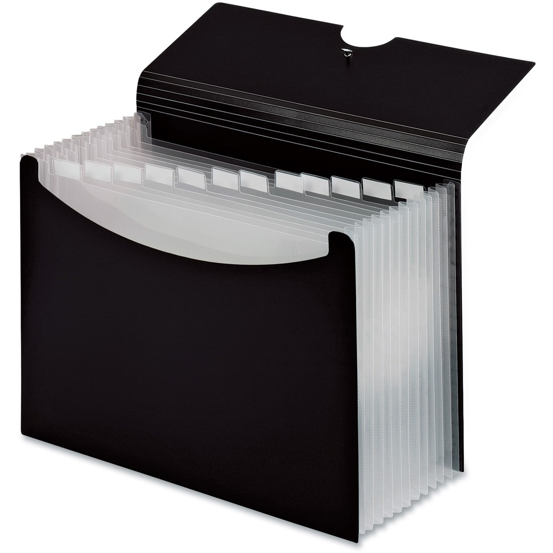 Pendaflex Second Nature Expanding Multi-Pocket Letter-Size Files