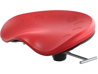Focal Swappable Seat Cushion
