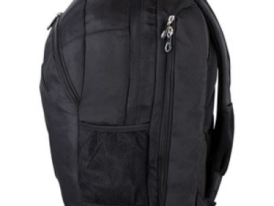 Swissgear Carrying Case (Backpack) for 17.3
